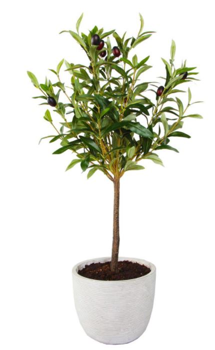 Faux Olive Tree in a pot